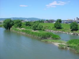 アパート近くの藻川の流れ