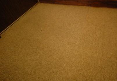 廊下に新しいタイルカーペットを置いたところ